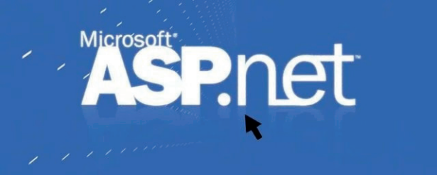 AspSoftware785
